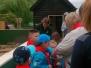 Beavers visit to Shepreth